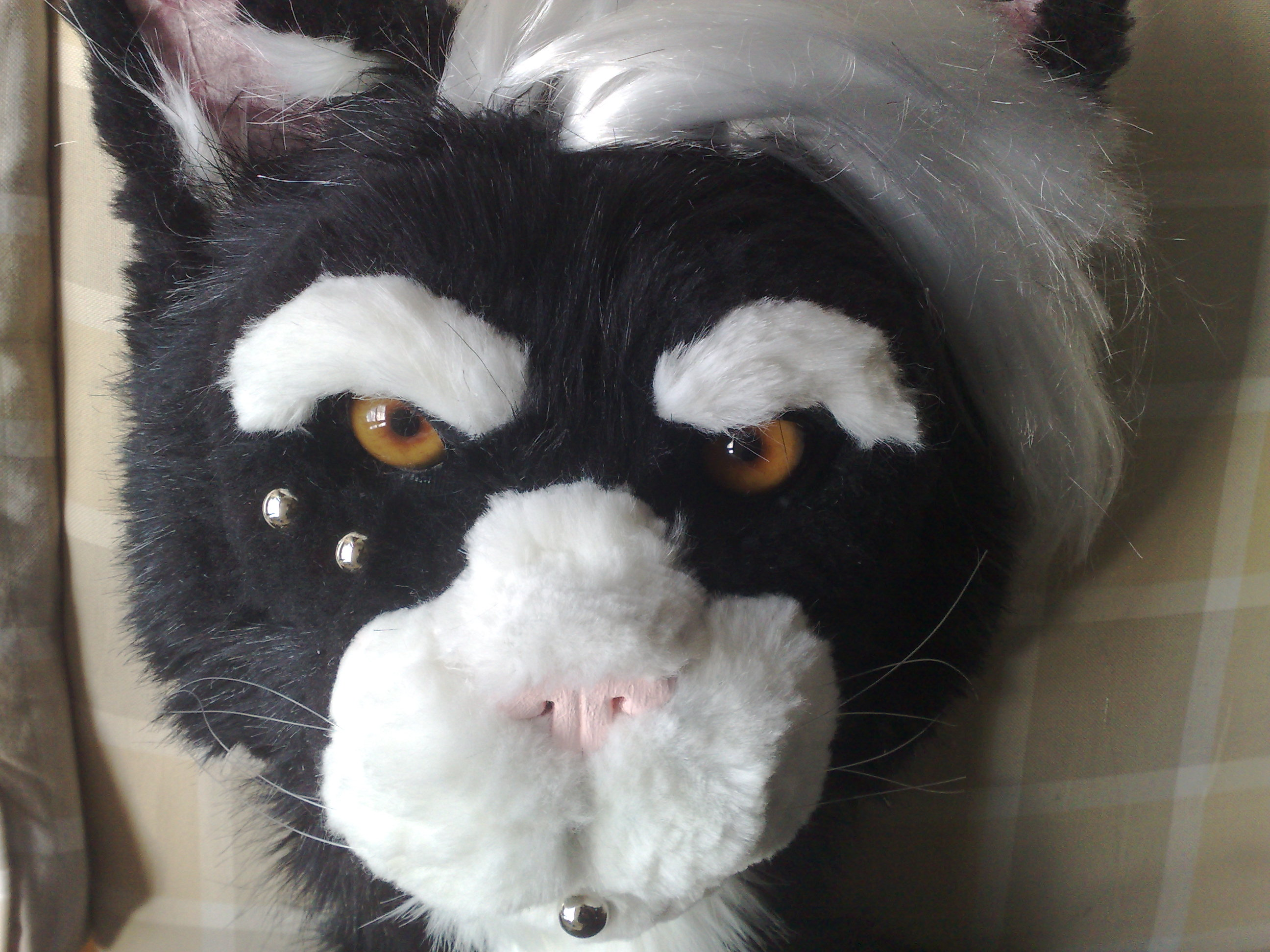 Making An Animal Mascot Head (Fursuit)