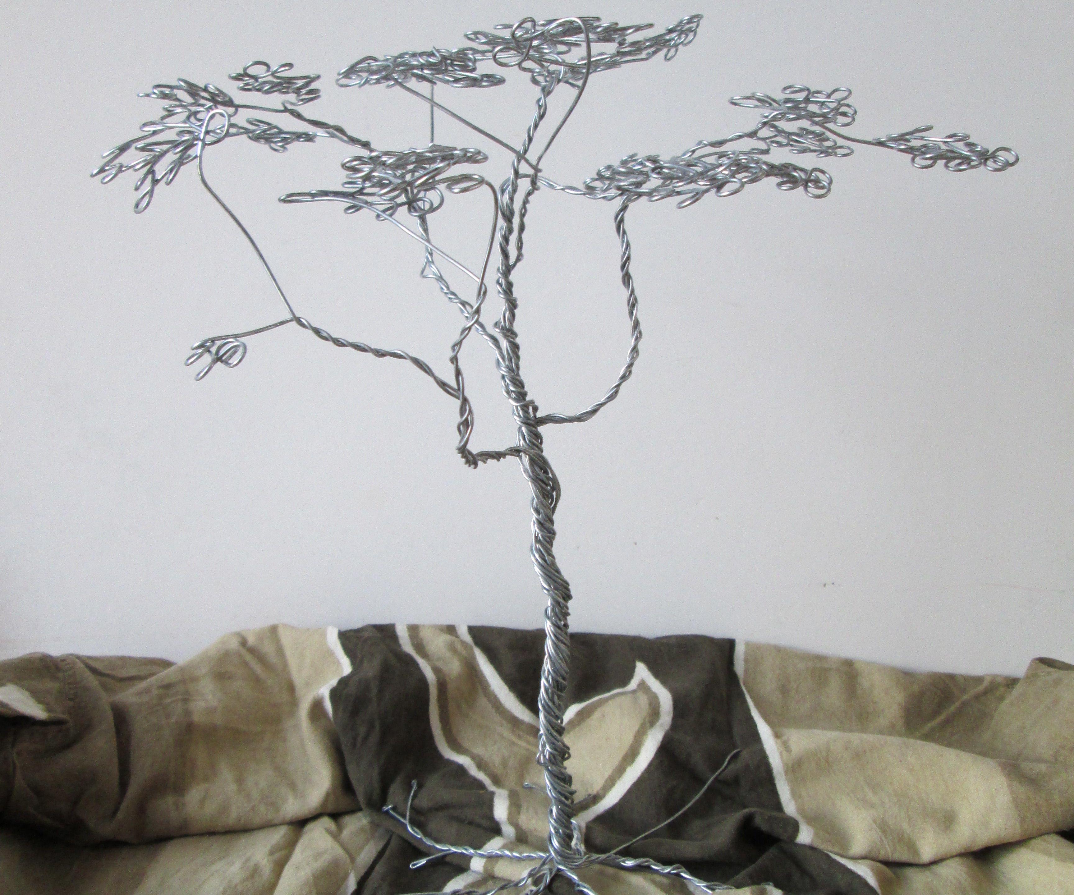 Wire Savannah Acacia