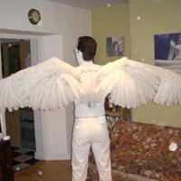 Make Angel Wings