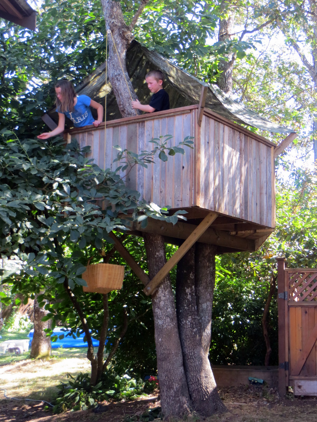 How To Build A Treehouse 17 Steps With Pictures Instructables