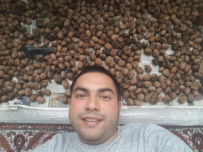 BONUS: Year 2017 New Walnuts :)