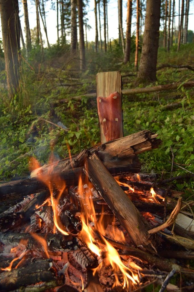 Campfire Planked Salmon & Bucket Potatoes