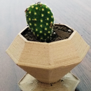 Design a Planter for 3D Printing in Less Than 5 Minutes