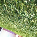 Bringing the Outside in with Artificial Grass