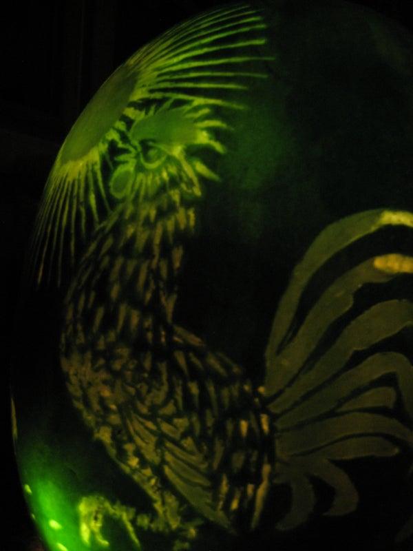 Melon Lantern Aka Chinese Lantern