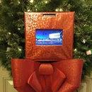 "Christmas Wreath 2.0 Raspberry Pi / Arduino ""Selfie / Photobooth"""
