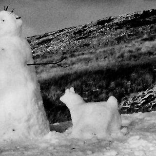Grey snow man and dog.jpg