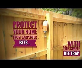 Quick and Easy Carpenter Bee Trap