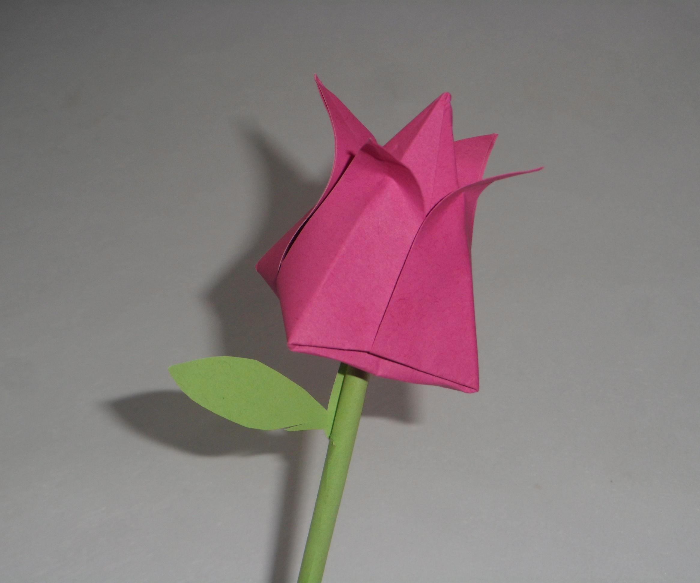 Origami Flower (Tulip)
