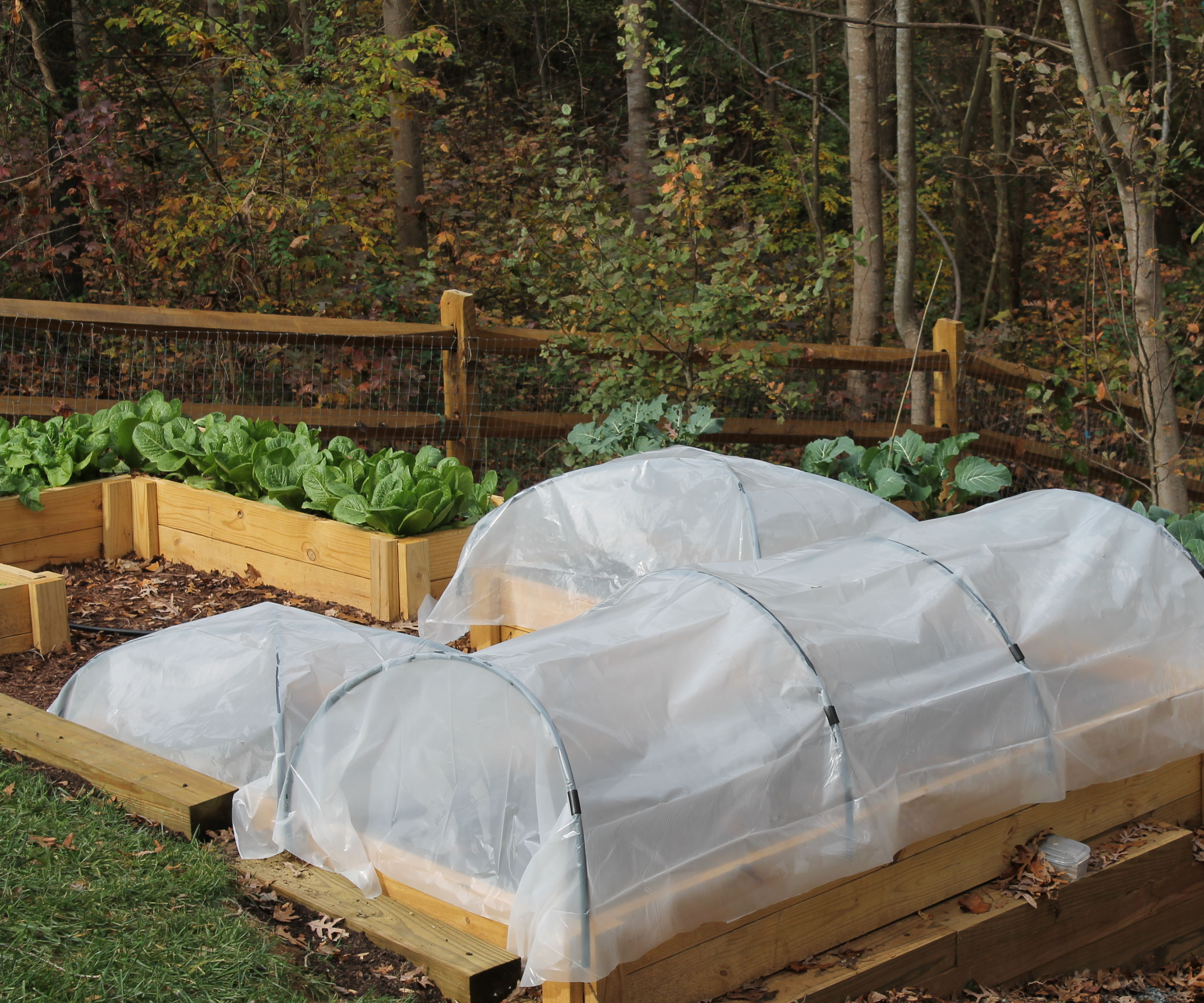 Simple Hoop Houses for Raised Beds