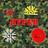 hypermatic555