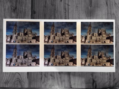Multiple Copies of the Same Photo