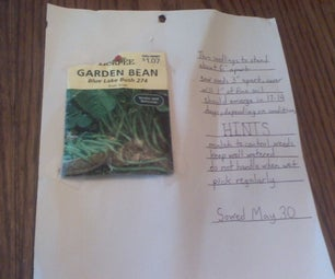 How to Make a Seed Card