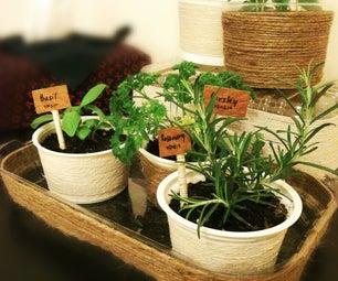 Mini Indoor Herb Garden