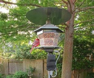 Bird Feeder Monitor