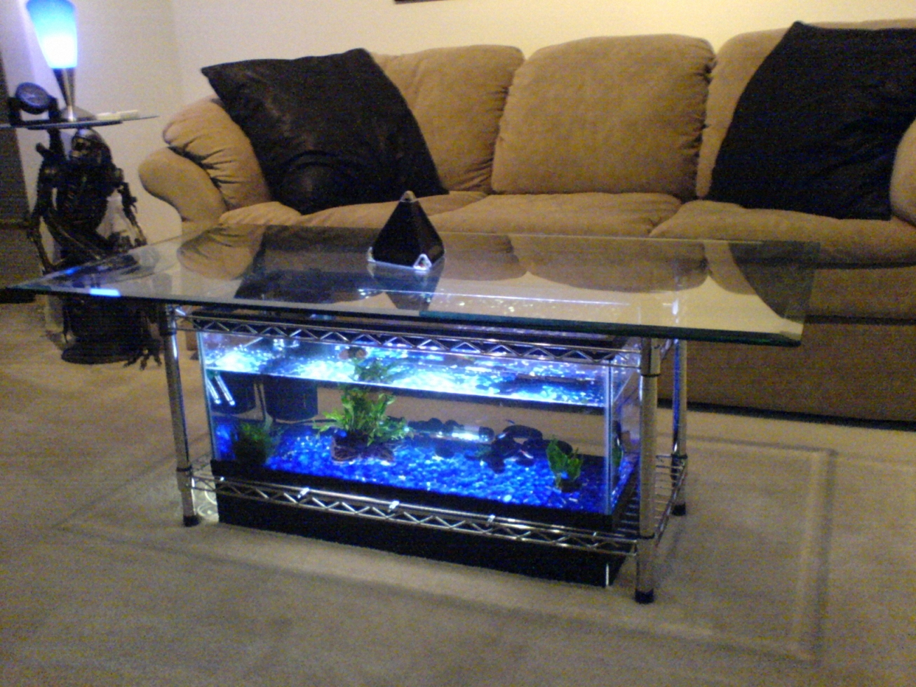 Woodwork How To Make A Coffee Table Aquarium Pdf Plans