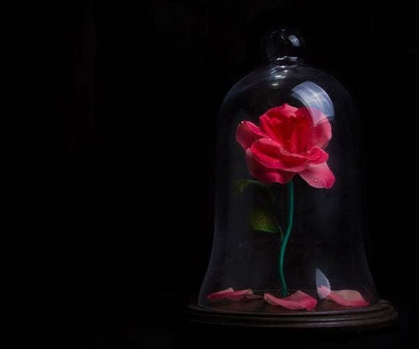 Beauty and the Beast - Beast's Rose Replica