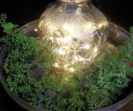Small Sparkling Garden in Jar
