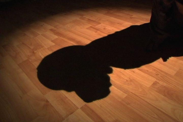 Make a Gurilla Spotlight