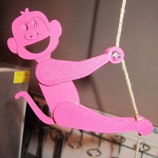 Monkey Time.jpg