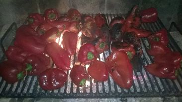 Preparing the Grill and Grilling the Peppers