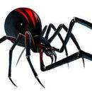 Black Widow Woodworks