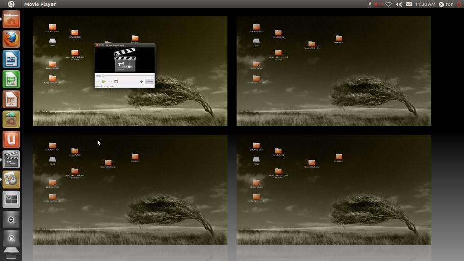 Share Files and Folders between Ubuntu11.04 (host) and Windows virtual Machine(VirtualBox OSE)