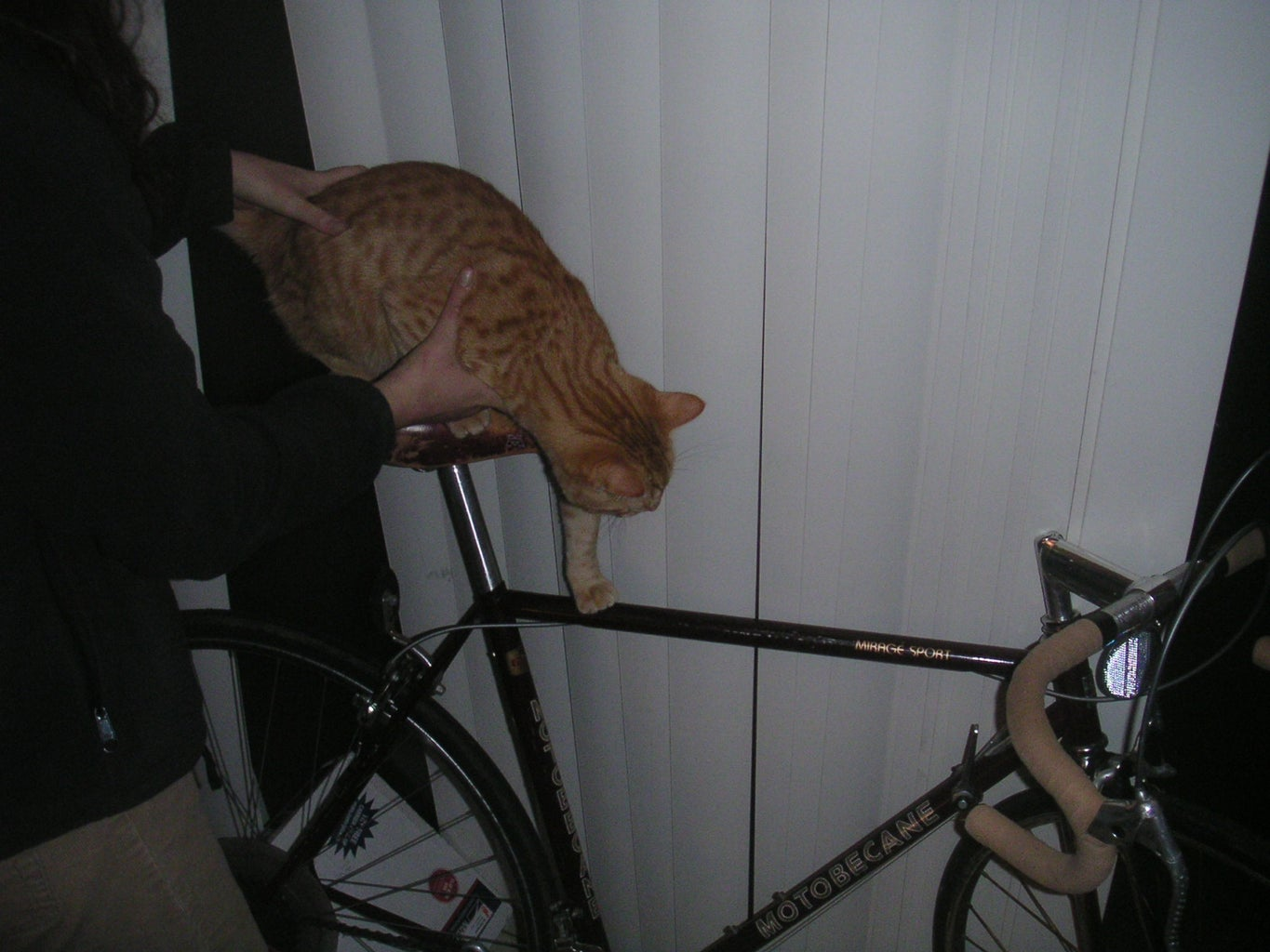 How to Keep Your Bike From Being Stolen