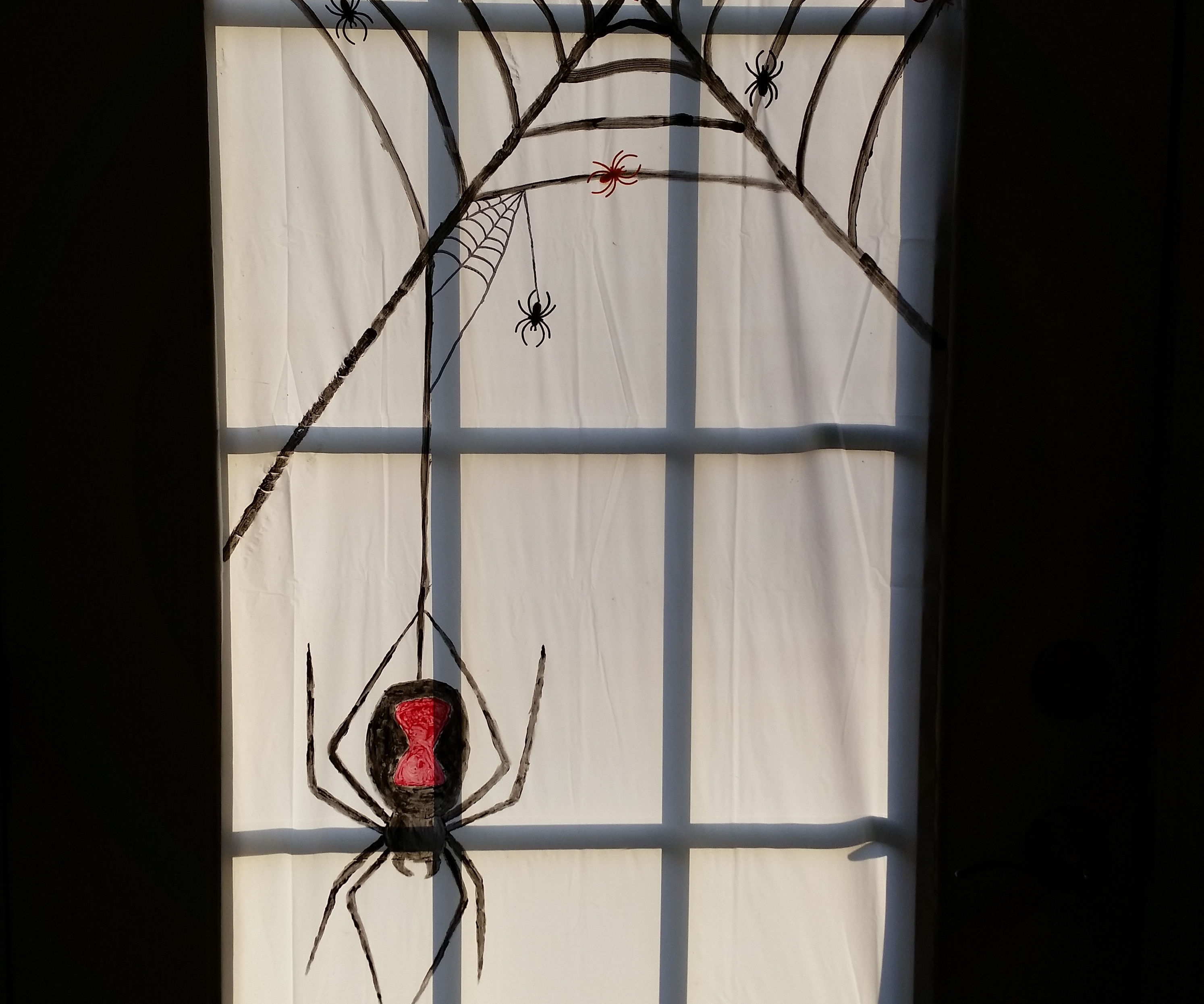 Spiderweb Door