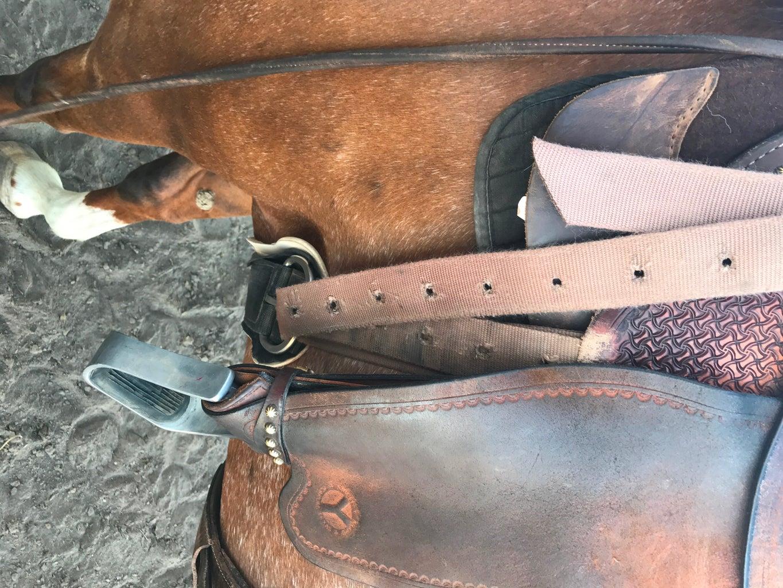 Cinching the Saddle Part 2