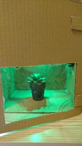LED Growing