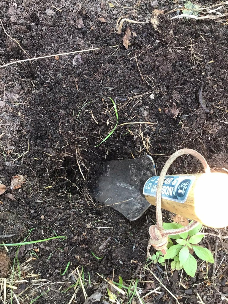 Dig a Hole for the Bottle