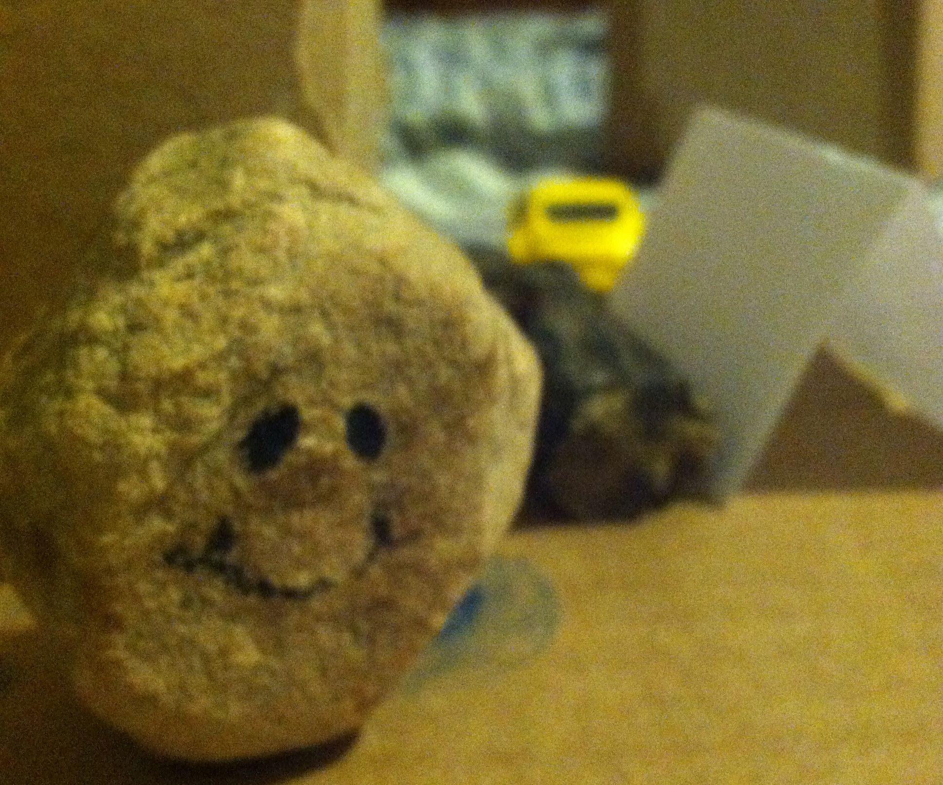 Guide to Pet Rocks: Part 1
