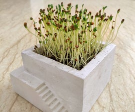 Cement Planter With Stairs