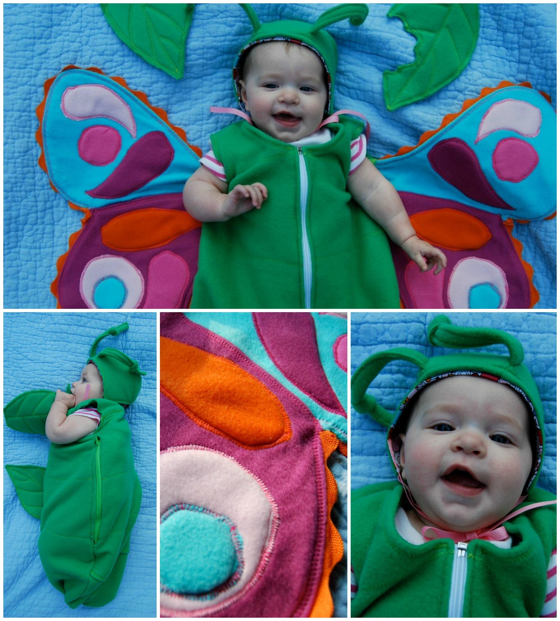 Caterpillar to Butterfly!