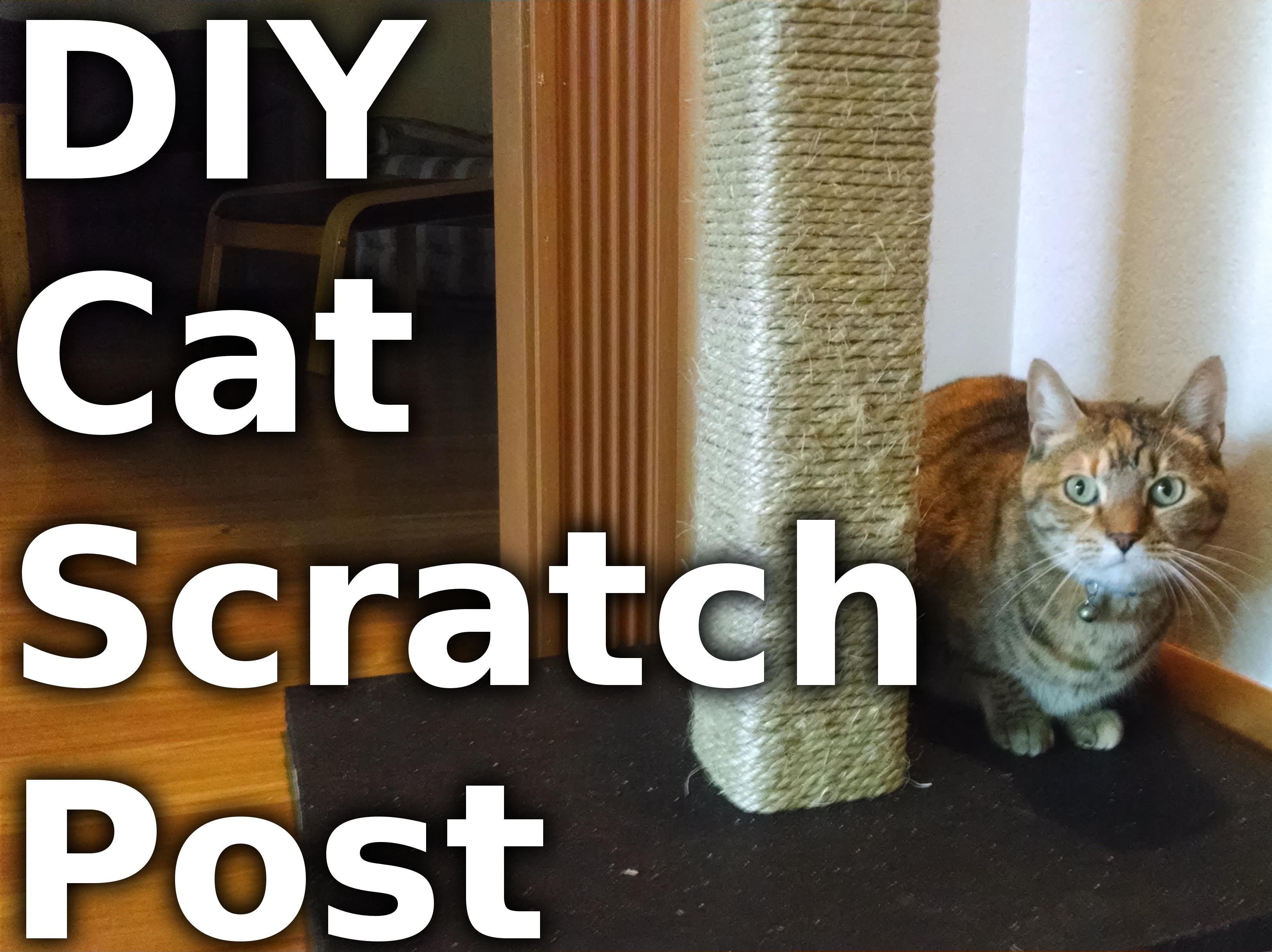 Make a Cat Scratching Post
