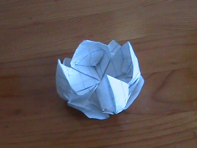 Origami Floating Lotus