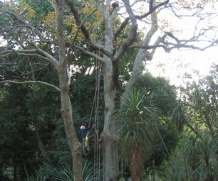 How to get a rope into a tree (without climbing it)