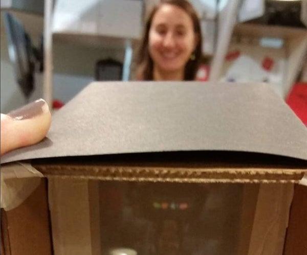 Cardboard Camera Obscura