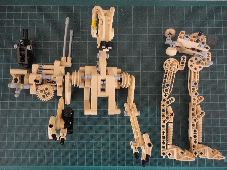 Torso and Head Construction