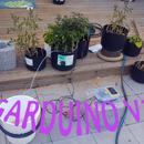 Arduino Automatic Watering System (Garduino)