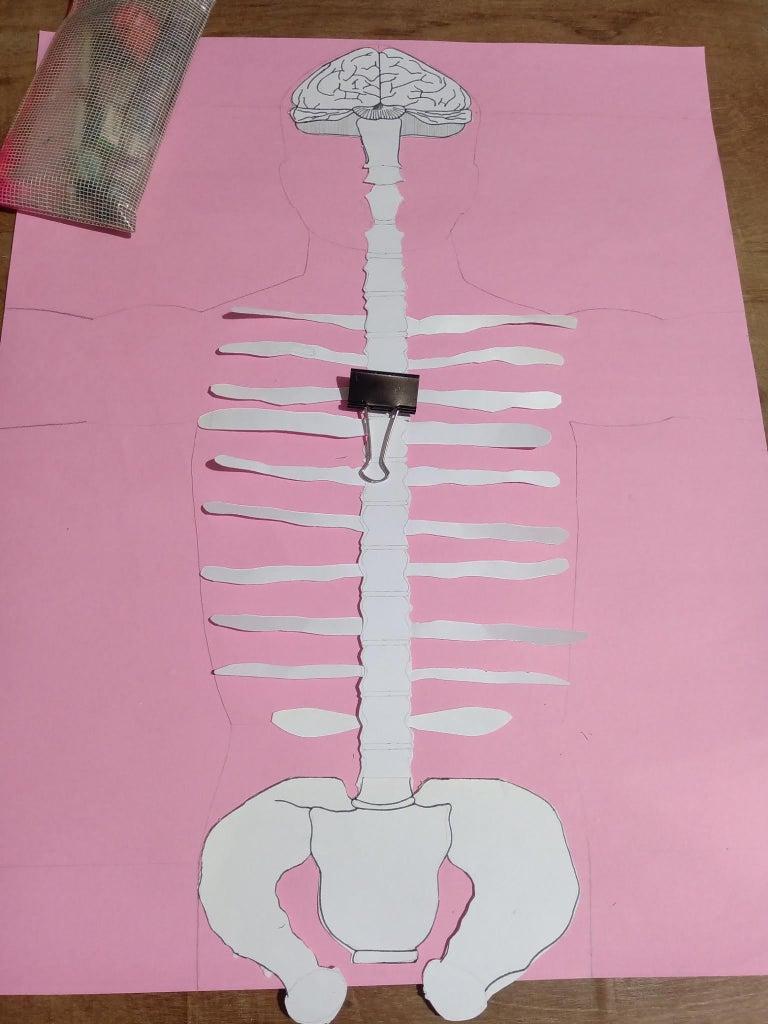 Layer 6 : Backside Ribs