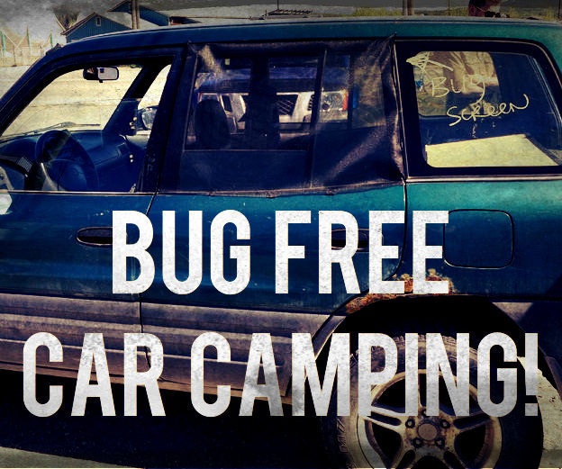 Bug-free car camping: window cover.