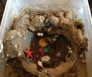 潮汐池立体模型