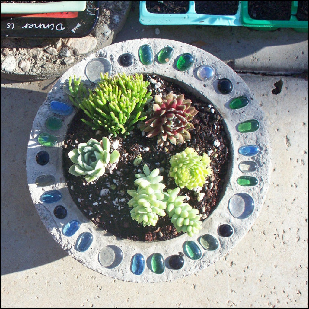 Select Plants and Add to Planter