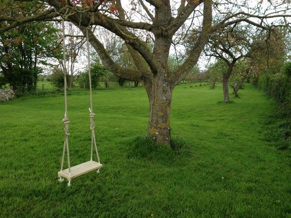 Traditional Garden Tree Swing