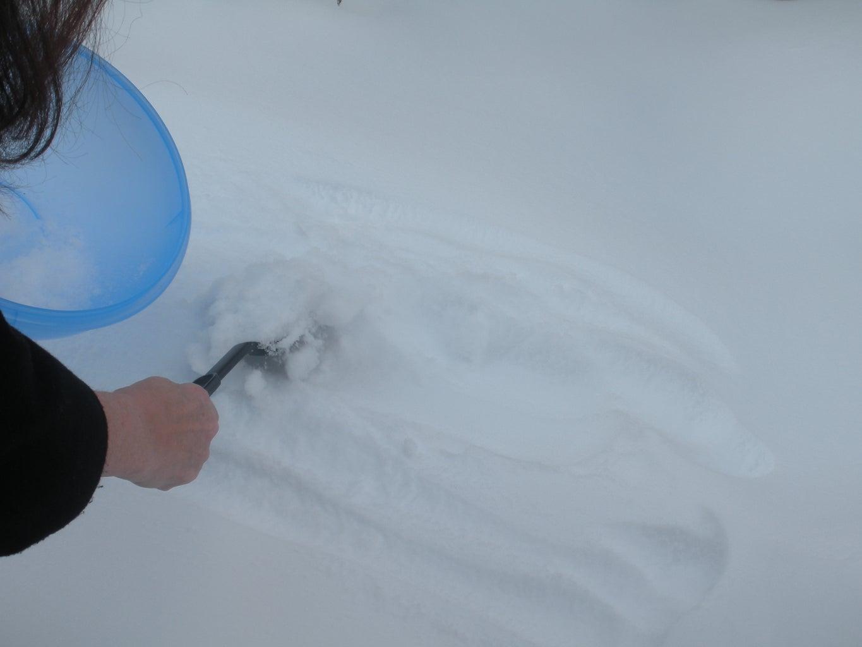 Gather Snow