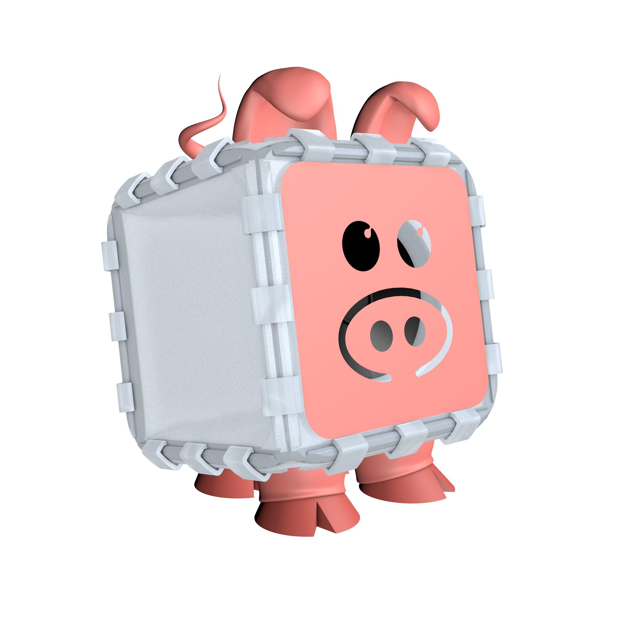 Bose Build Pig