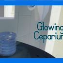 Glowing Bacteria Ceparium