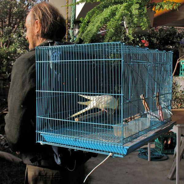 Make a Birdy Backpack, to Carry a Pet Bird (or Two).